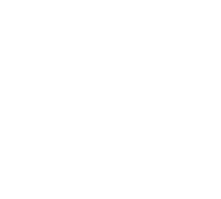 Ds logo white%40180